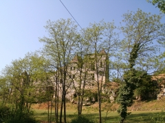 20110420105341-img_2268