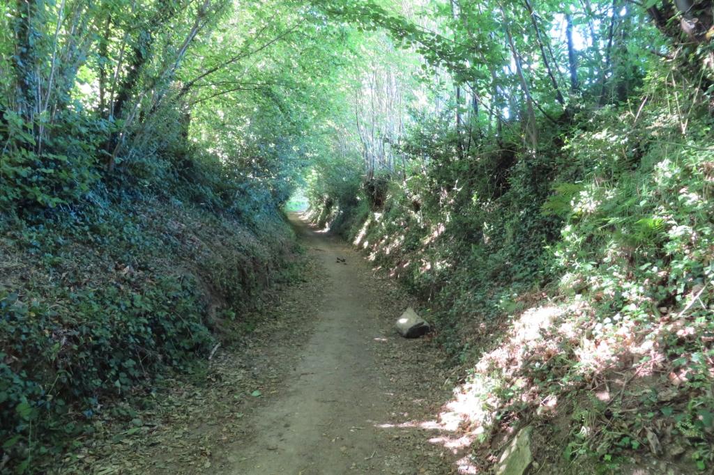 Peu avant Concarneau, un beau chemin creux