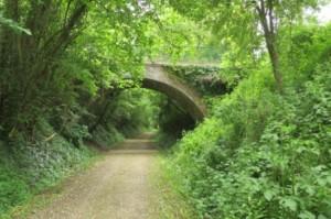 Sur la voie verte entre Condé et Alençon.